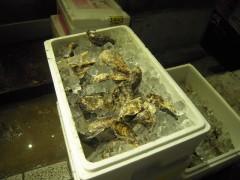 ラーメン屋の隣の牡蠣小屋の店前の牡蠣です