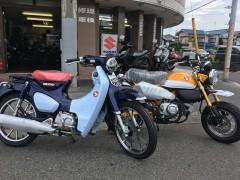 モンキー125とスーパーカブC125