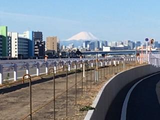 翌朝の富士山が綺麗でした